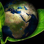 El desafío de un datacenter ecológico